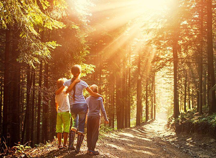 Do prírody nielen na huby, ale na zdravie!